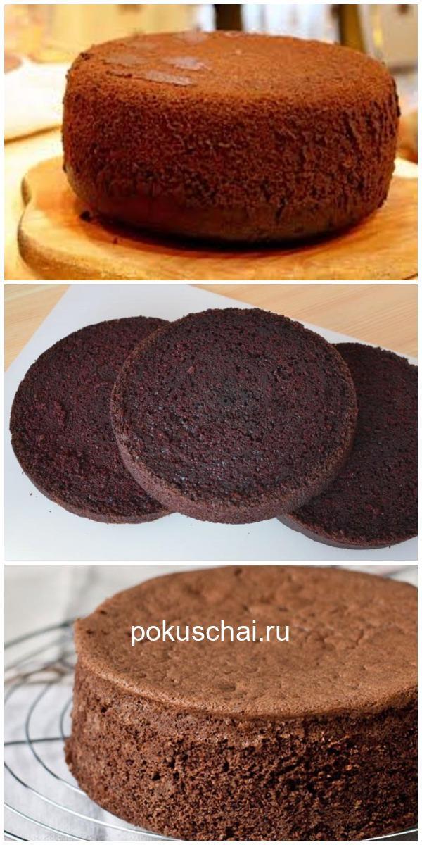 Это будет ваш любимый рецепт бисквита. Воздушный, как пух!