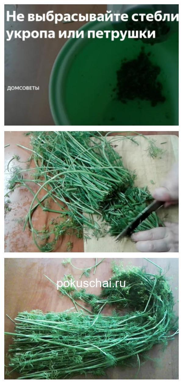 Не выбрасывайте стебли укропа. Из них можно сделать кое-что очень вкусное!