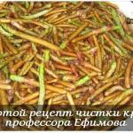 ЗОЛОТОЙ РЕЦЕПТ ПРОФЕССОРА ЕФИМОВА